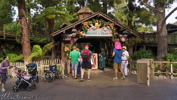Disneyland Resort, Disneyland, Critter Country, Winnie the Pooh, Haunted Mansion, Cast Member