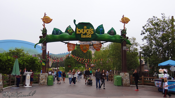 Disneyland Resort, Disney California Adventure, A Bug's Land, Disability Access Service, DAS, Kiosk