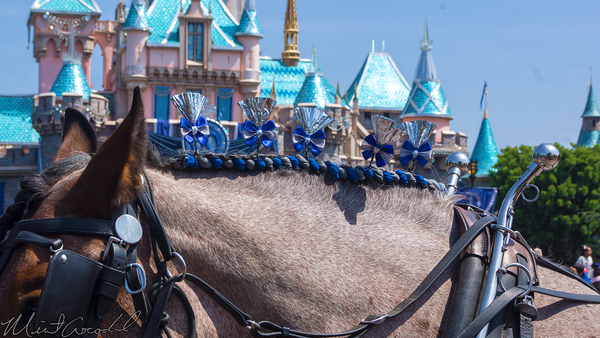 Disneyland Resort, Disneyland, Disneyland60, Horse, Decoration, Decorate, Decor