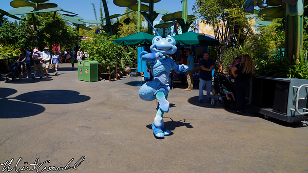 Disneyland Resort, Disney California Adventure, Bug, Land, Flik