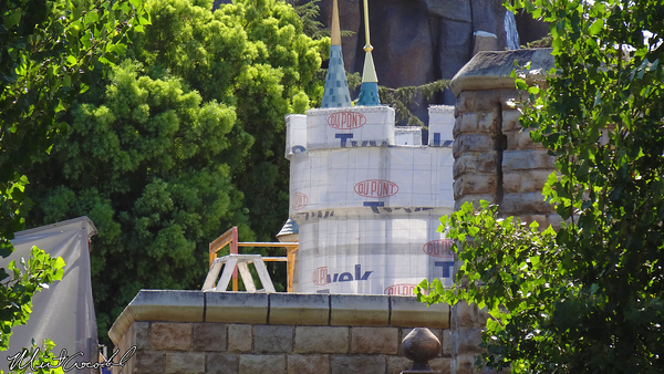 Disneyland Resort, Disneyland, Castle, Safe Rail