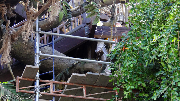 Disneyland Resort, Disneyland, Tarzan Treehouse, Refurb, Refurbishment