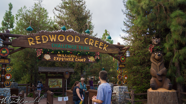 Disneyland Resort, Disney California Adventure, Redwood Creek Challenge Trail, Christmas, 2014