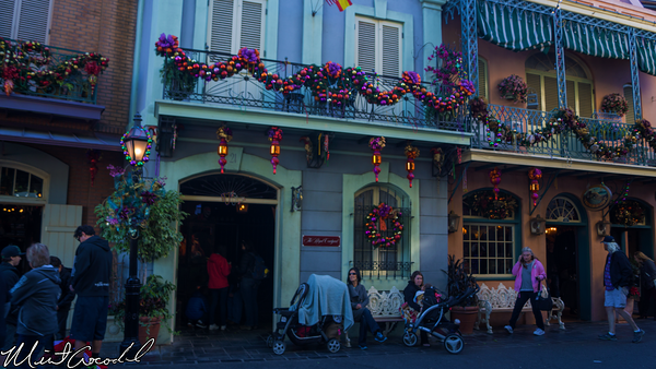 Disneyland Resort, Disneyland, New Orleans Square, Christmas Time, Christmas, Time, Royal, Courtyard, Refurbishment, Refurbish, Refurb