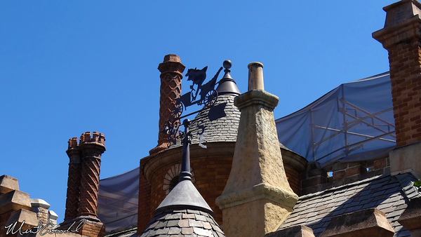 Disneyland Resort, Disneyland, Fantasyland, Castle, Safety Rail