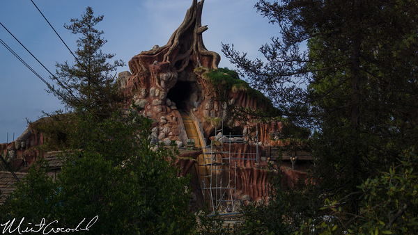 Disneyland Resort, Disneyland, Critter, Country, Splash, Mountain, Winnie, Pooh, Briar, Patch, Hungry, Bear, Restaurant, Refurbishment, Refurbish, Refurb, Closed