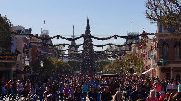 Disneyland Resort, Disneyland, Main Street U.S.A., Christmas Time