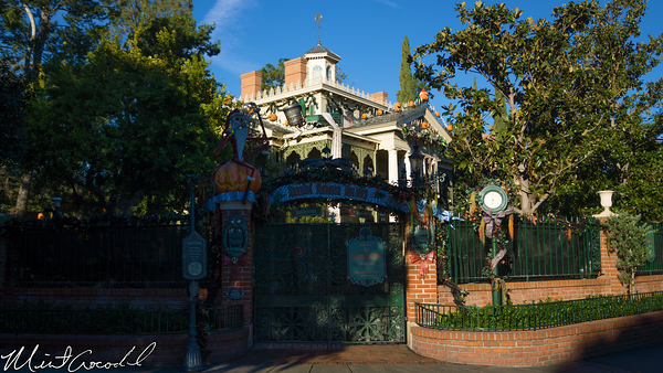 Disneyland Resort, Disneyland, Haunted, Mansion, Holiday, Classic