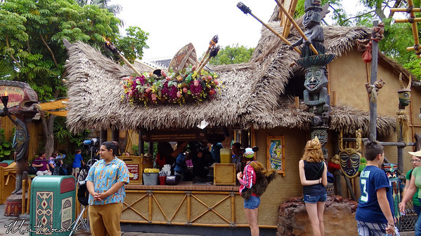 Disneyland Resort, Disneyland, Enchanted Tiki Room, Filming