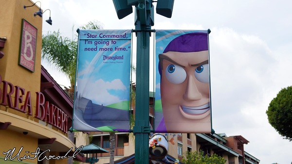 Disneyland Resort, Banner