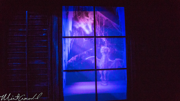Disneyland Resort, Haunted Mansion, Station, Load, Attic, Lenticular, Window