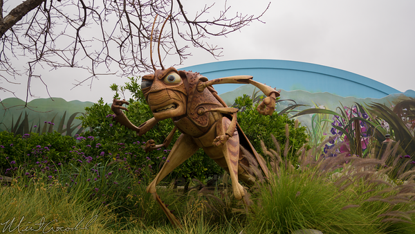 Disneyland Resort, Disneyland60, Disney California Adventure, A Bugs Land, Tough, Be, Bug, Refurbishment, Refurbish, Refurb, Ant, Man, Antman