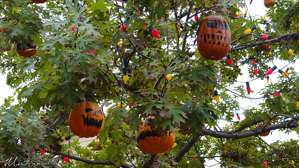 Disneyland Resort, Disneyland, Halloween Time, Halloween Tree