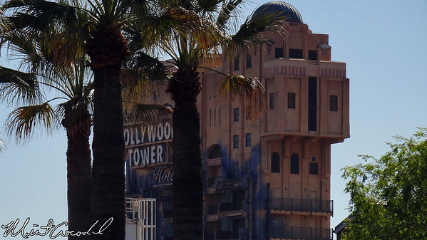 Disney California Adventure, Paradise Pier, Twilight Zone Tower of Terror