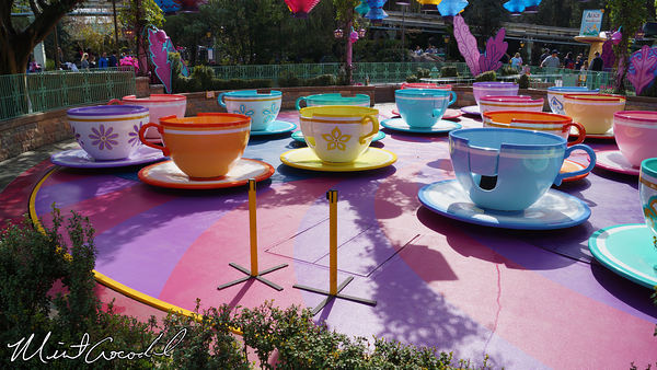 Disneyland Resort, Disneyland, Tea Cups, Rain