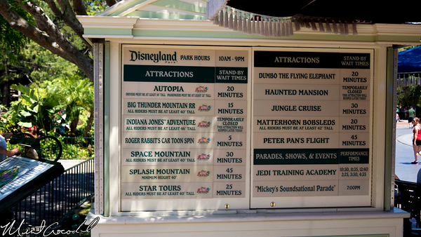 Disneyland Resort, Disneyland, Wait Time, Board