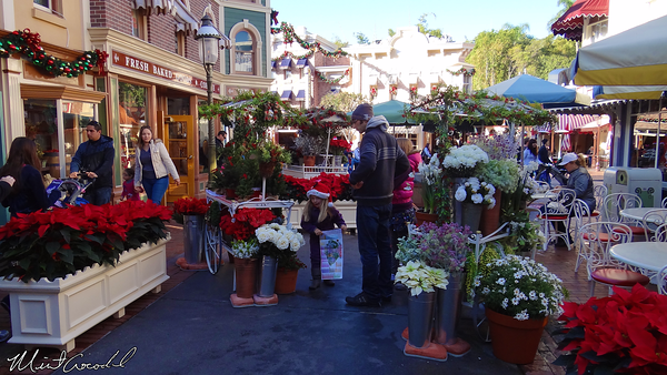 Disneyland Resort, Disneyland, Main Street U.S.A., Center Street, Flower Market