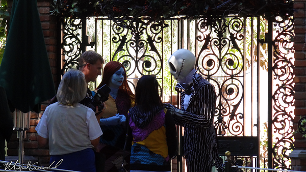 Disneyland Resort, Disneyland, Haunted Mansion Holiday, Jack, Sally
