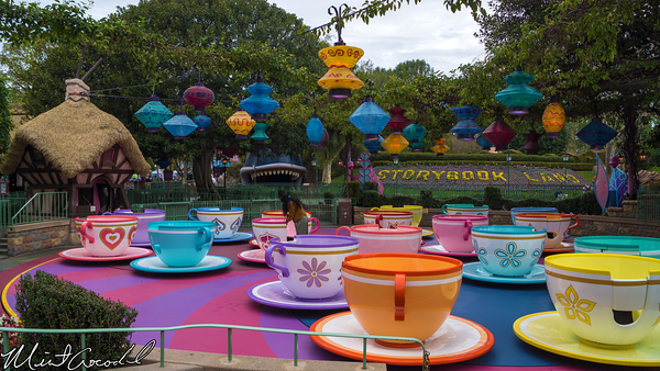 Disneyland Resort, Disneyland, Fantasyland, Tea, Cups