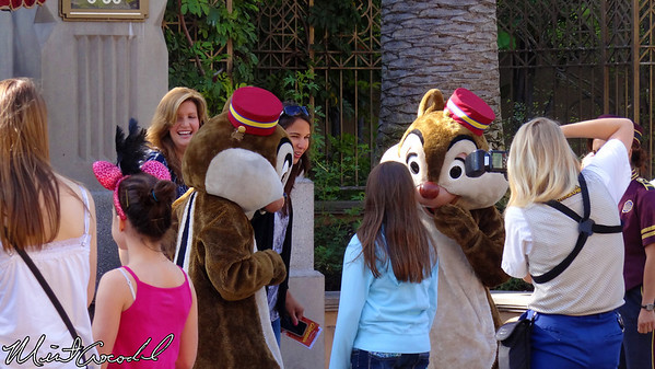 Disney California Adventure, Chip, Dale,
