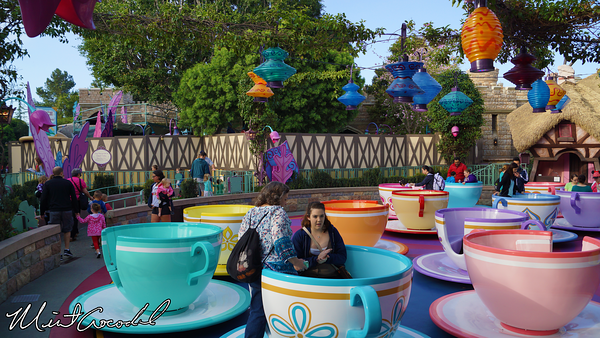 Disneyland Resort, Disneyland, Mad Tea Party, Tea Cups