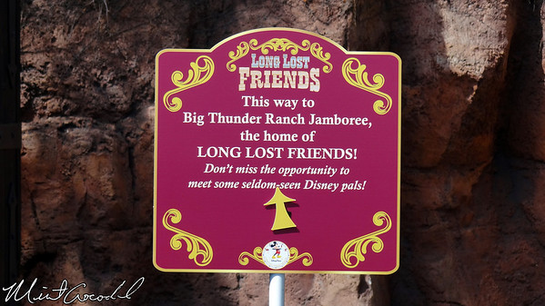 Disneyland, Long Lost Friends, Limited Time Magic