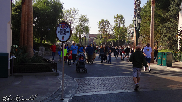 Disneyland Resort, Disney California Adventure, Buena Vista Street, Radiator Springs Racers, FastPass