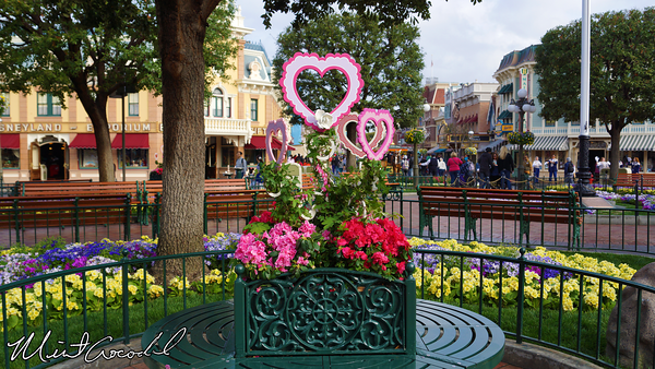 Disneyland Resort, Disneyland, Main Street U.S.A., Town Square, Valentine's Day