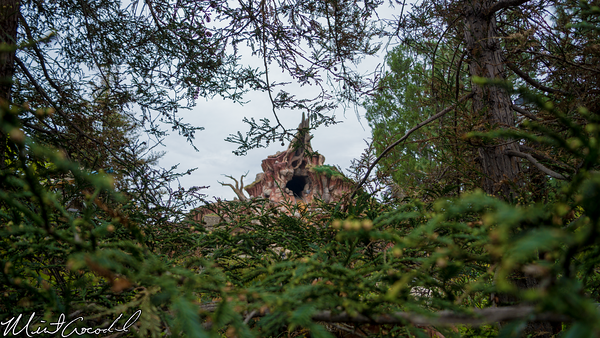 Disneyland Resort, Disneyland, Critter, Country, Refurbishment, Refurbish, Refurb, Splash, Mountain, Winnie, Pooh