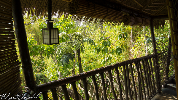 Disneyland Resort, Disneyland, Tarzan Treehouse, Thatch, Hut