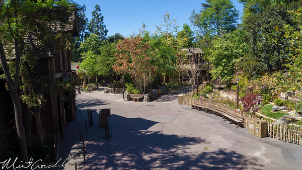 Disneyland Resort, Disneyland, Critter, Country, Refurbishment, Refurbish, Refurb, Splash, Mountain, Hungry, Bear, Restaurant, Winnie, Pooh, Briar, Patch