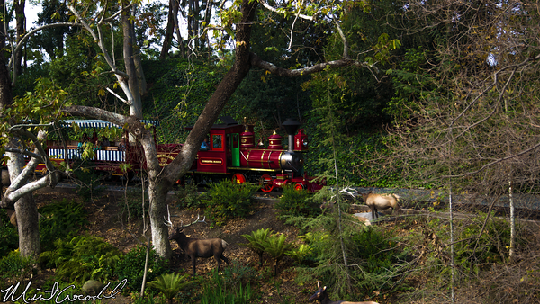 Disneyland Resort, Disneyland, Rivers, America, Railroad, Train