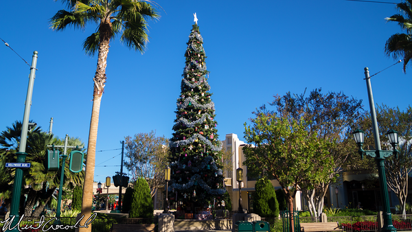 Disneyland Resort, Disney California Adventure, Buena Vista Street, Christmas Time, Christmas, Tree
