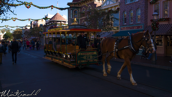 Disneyland Resort, Disneyland, Main Street U.S.A., Christmas Time, Christmas