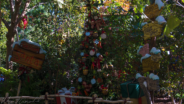 Disneyland Resort, Disneyland60, Christmas, Time, Disneyland, Critter, Country, Santa, Claus, Meet, Greet, Winnie, Pooh