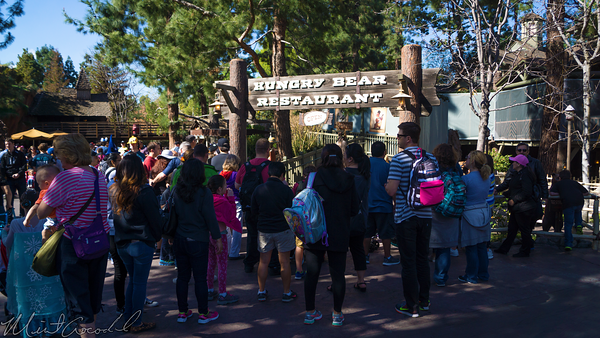 Disneyland Resort, Disneyland, Critter, Country, Hungry, Bear, Restaurant