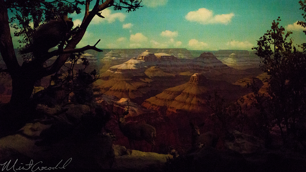 Disneyland Resort, Disneyland60, Christmas, Time, Disneyland, Railroad, Train, Grand Canyon, Primeval, World