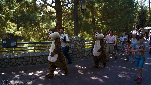 Disneyland Resort, Disney California Adventure, Grizzly, Peak, River, Run, Chip, Dale