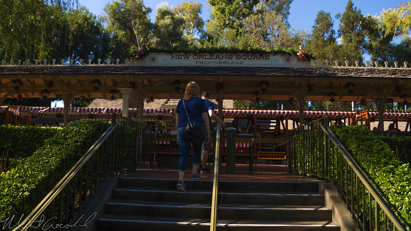 Disneyland Resort, Disneyland60, Halloween, Time, Christmas, Disneyland, New, Orleans, Square, Frontierland, Station, Railroad, Train