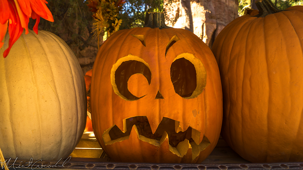 Disneyland Resort, Disneyland60, Halloween, Time, Pumpkin, Disneyland, Frontierland, Big, Thunder, Ranch