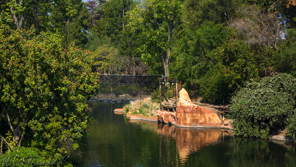 Disneyland Resort, Disneyland, Frontierland, Tom, Sawyer, Island, River, America, Star, Wars, Construction, Cofferdam, Dam, Mark, Twain