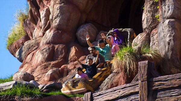 Disneyland Resort, Disneyland, Critter, Country, Splash, Mountain