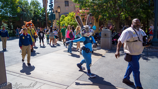 Disneyland Resort, Disney California Adventure, Hollywood Land, Hyperion, Theater, Zootopia, Nick, Judy