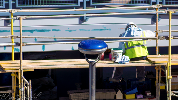 Disneyland Resort, Disneyland, Tomorrowland, Autopia, Refurbishment, Refurbish, Refurb, Honda, Blue, Paint