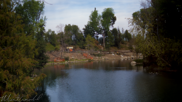 Disneyland Resort, Disneyland, Critter, Country, Hungry, Bear, Restaurant, River, America, Star, Wars, land, Construction, Tree, Trees