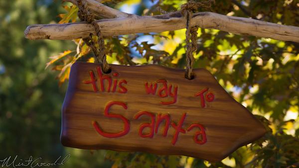 Disneyland Resort, Disneyland60, Christmas, Time, Disneyland, Critter, Country, Santa, Claus, Meet, Greet, Winnie, Pooh