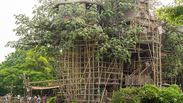 Hong, Kong, Disneyland, Adventureland, Tarzan, Treehouse, Refurbishment, Refurb, Refurbish, Scaffolding, Scaffold