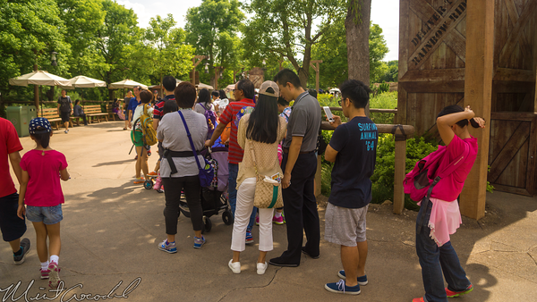 Hong, Kong, Disneyland, Adventureland, Grizzly, Gulch, Frozen, Village, Fun, Anna, Elsa