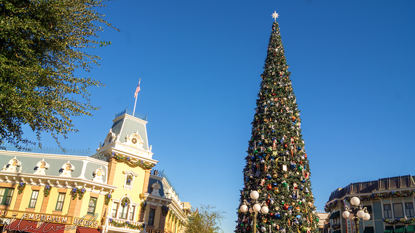 Disneyland Resort, Disneyland60, Christmas, Time, Disneyland, Main Street U.S.A., Tree