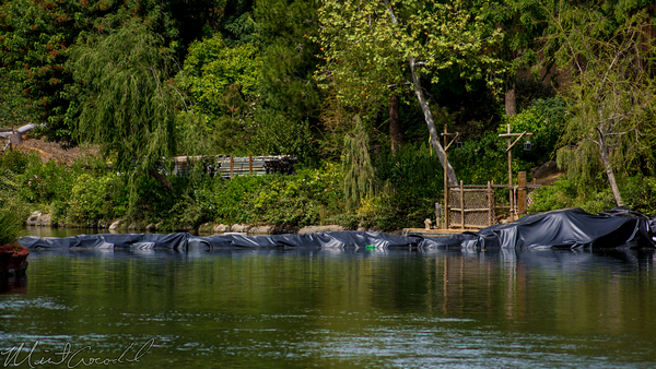 Disneyland Resort, Disneyland, Critter, Country, River, America, Star, Wars, Land, Construction, Cofferdam, Dam, Water
